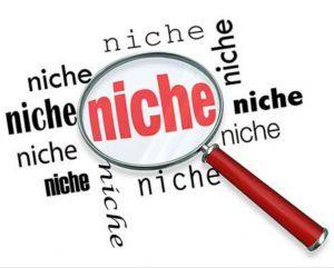 Bisnis Online fokus di Satu Niche